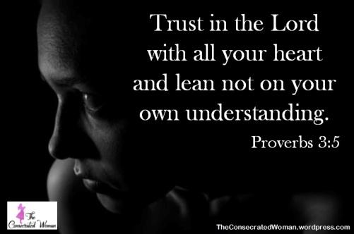 Proverbs 3 5