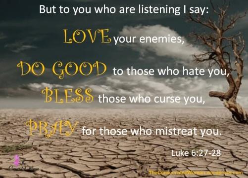 Luke 6 27-28