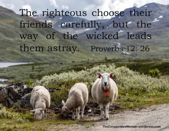 Proverbs 12 26