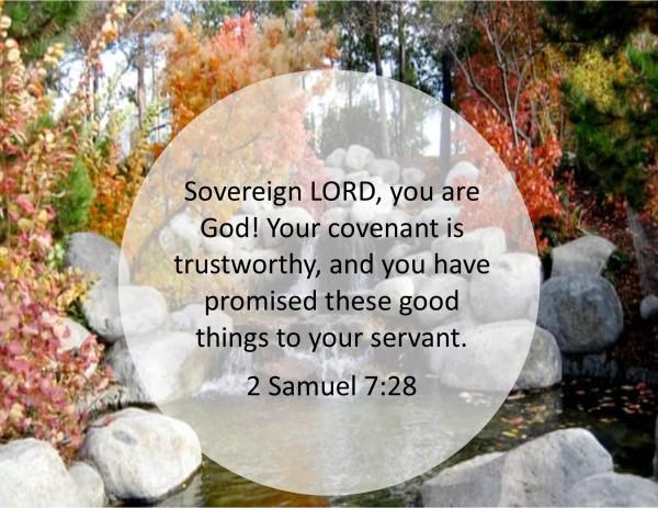2 Samuel 7 28.jpg