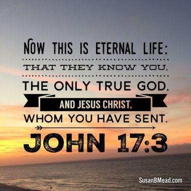 1 john 17 3