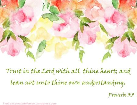 1 proverbs 3 5