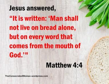 1 11-12 1 Matthew 4 4.jpg