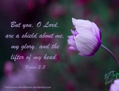 1 11-24 1 Psalm 3 3.jpg