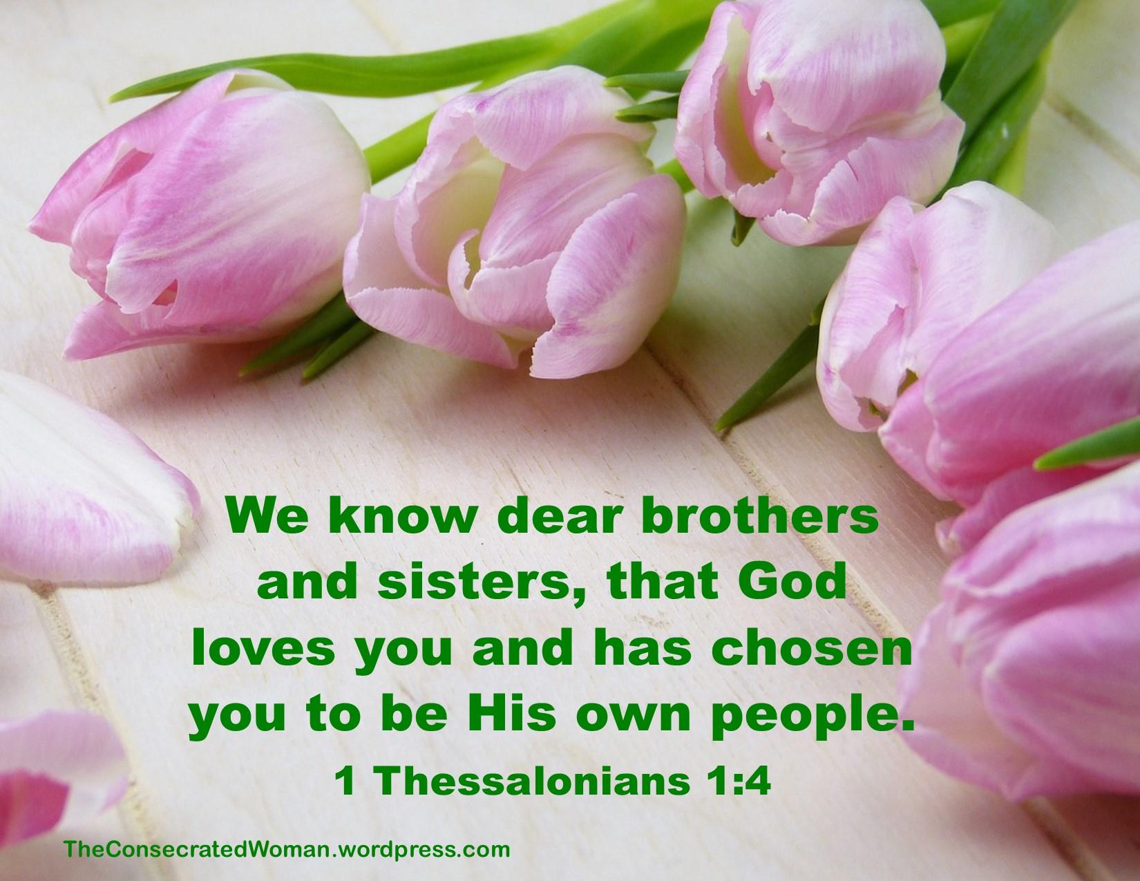 1 1-11-18 1 Thessalonians 1 4.jpg