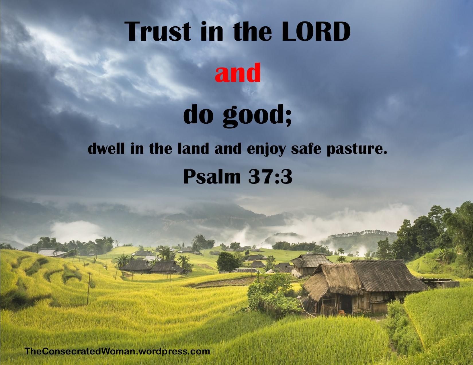 1 1-12 18 Psalm  37 3.jpg