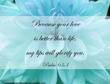 1 Psalm 63 3