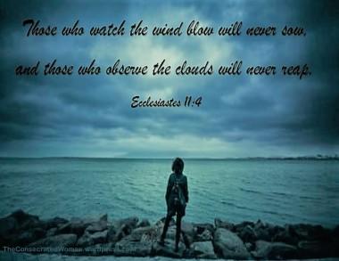 Ecclesiastes 11 4.jpg