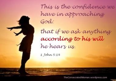 1 John 5 14