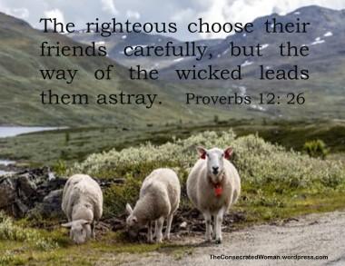 Proverbs 12 26.jpg