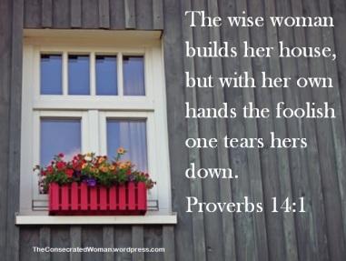 Proverbs 14 1