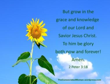 2 Peter 3 18.jpg