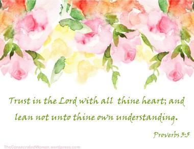 Proverbs 3 5 b