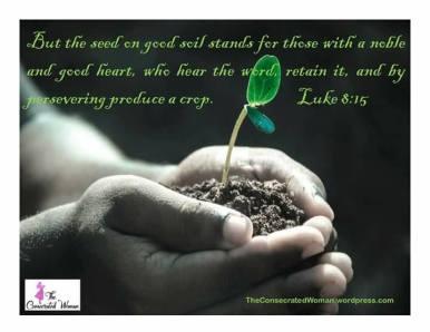 Luke 8 15 2
