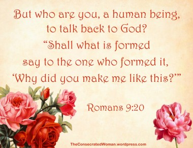 Romans 9 20.jpg