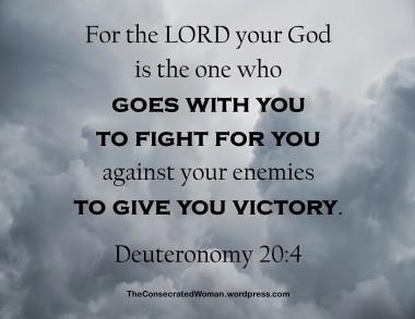 Deuteronomy 20 4.jpg
