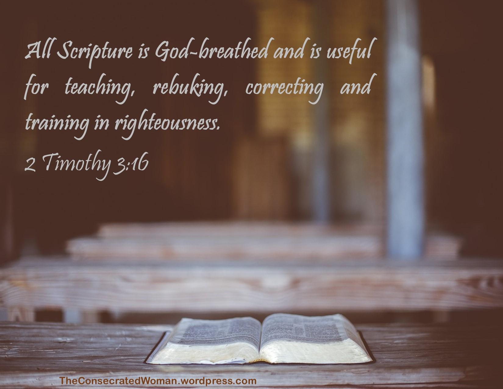 2 Timothy 3 16.jpg