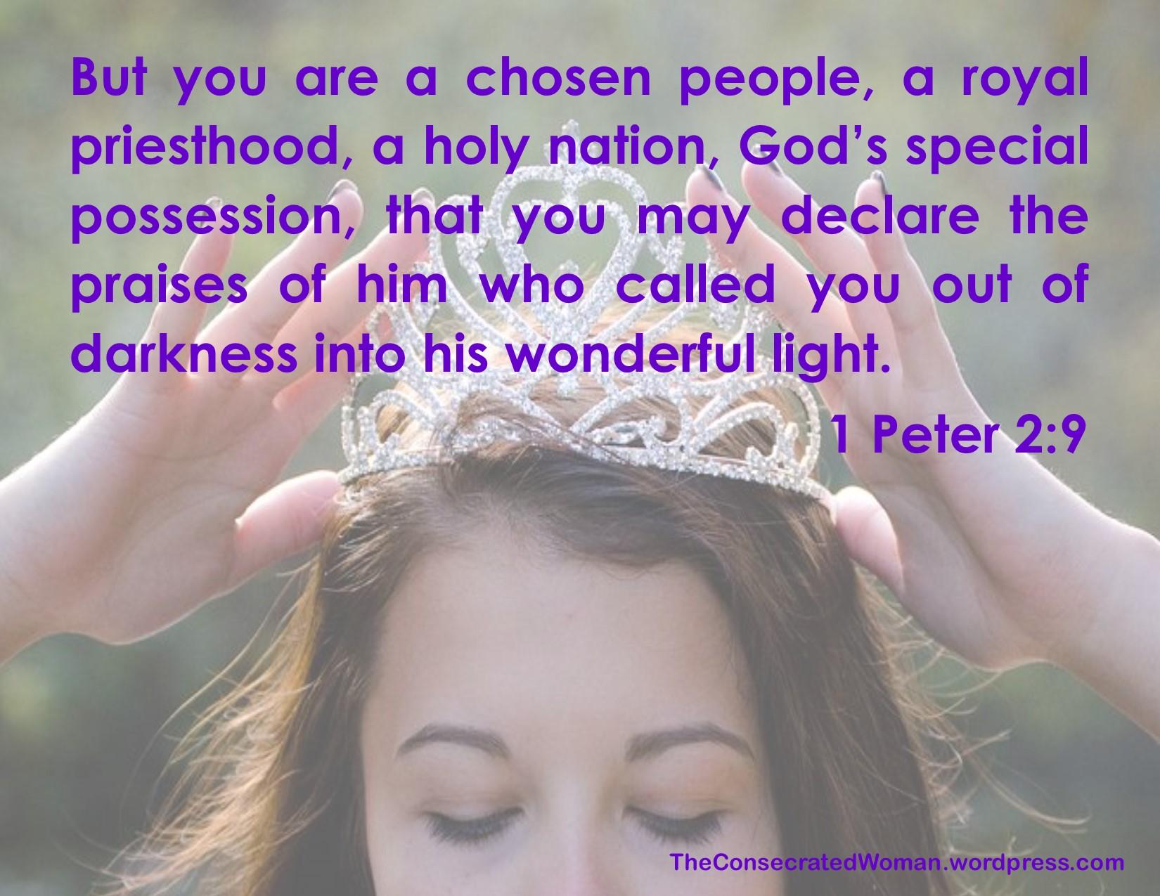 1 Peter 2 9.jpg