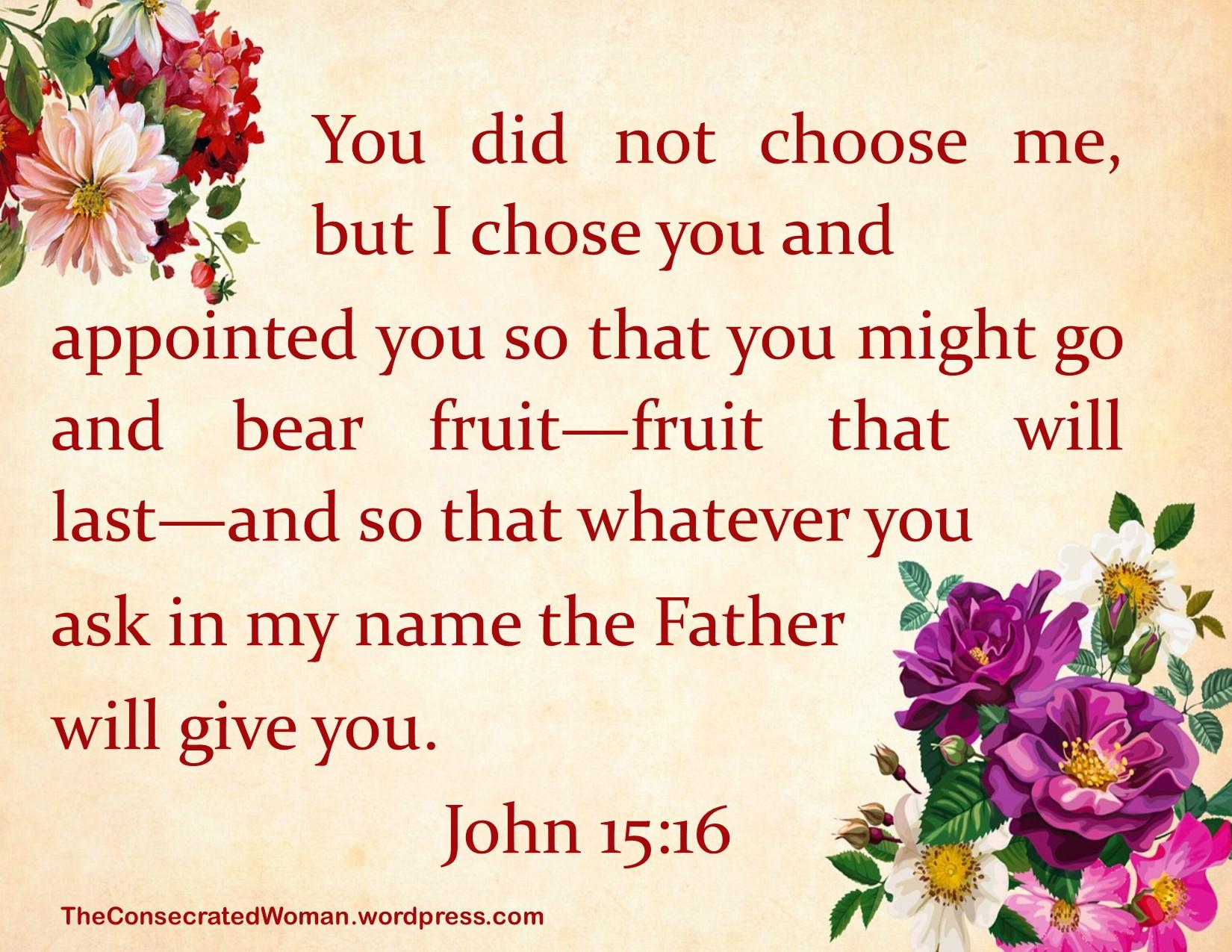 John 15 16.jpg
