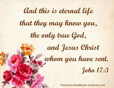 John 17 3.jpg