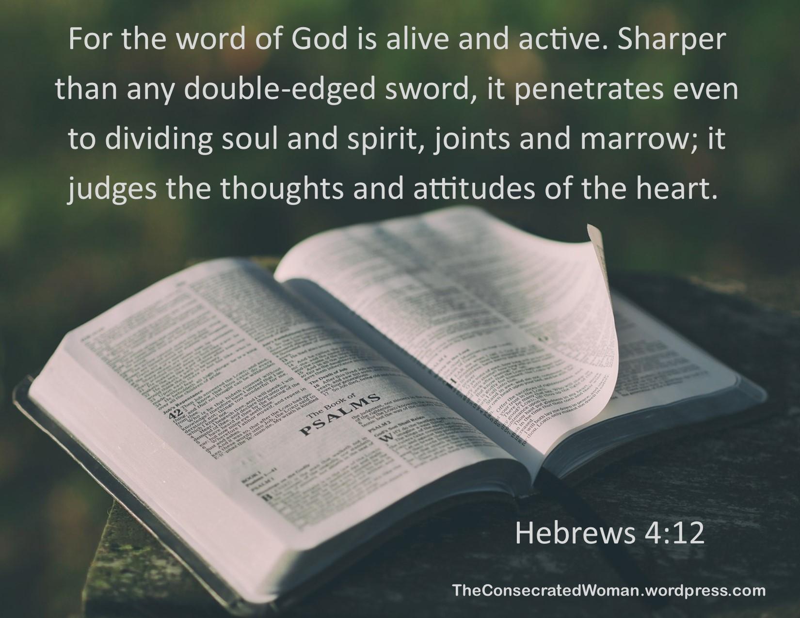 Hebrews 4 12.jpg