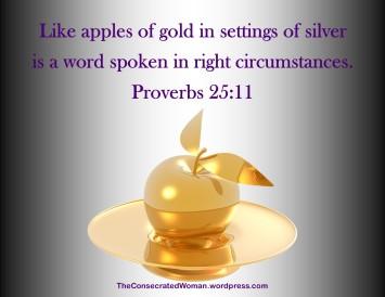 Proverbs 25 11