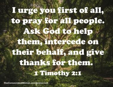 1 Timothy 2 1 (2).jpg