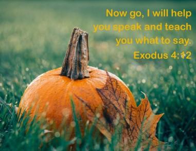 Exodus 4 12.jpg