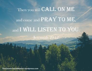 Jeremiah 29 12.jpg