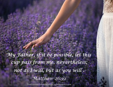 Matthew 26 39.jpg