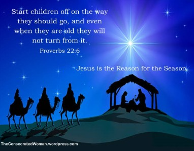 Proverbs 22 6 (2)