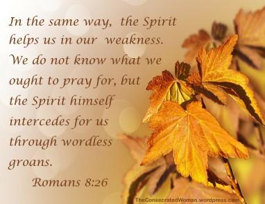 Romans 8 26
