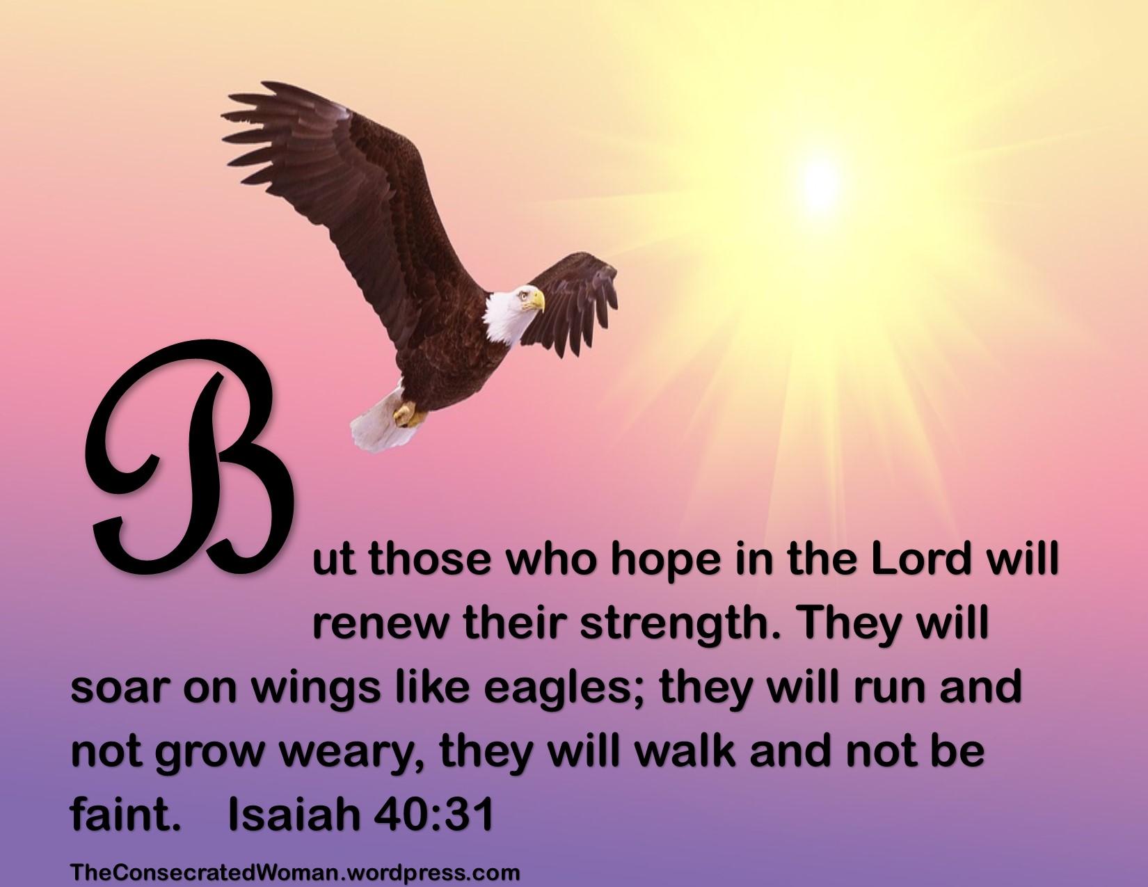 Isaiah 40 31.jpg