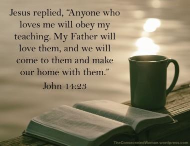 John 14 23