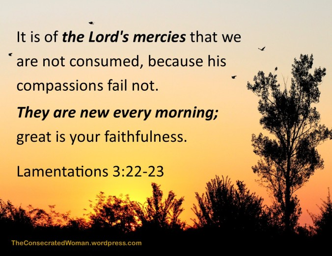 Lamentations 3 22-23.jpg