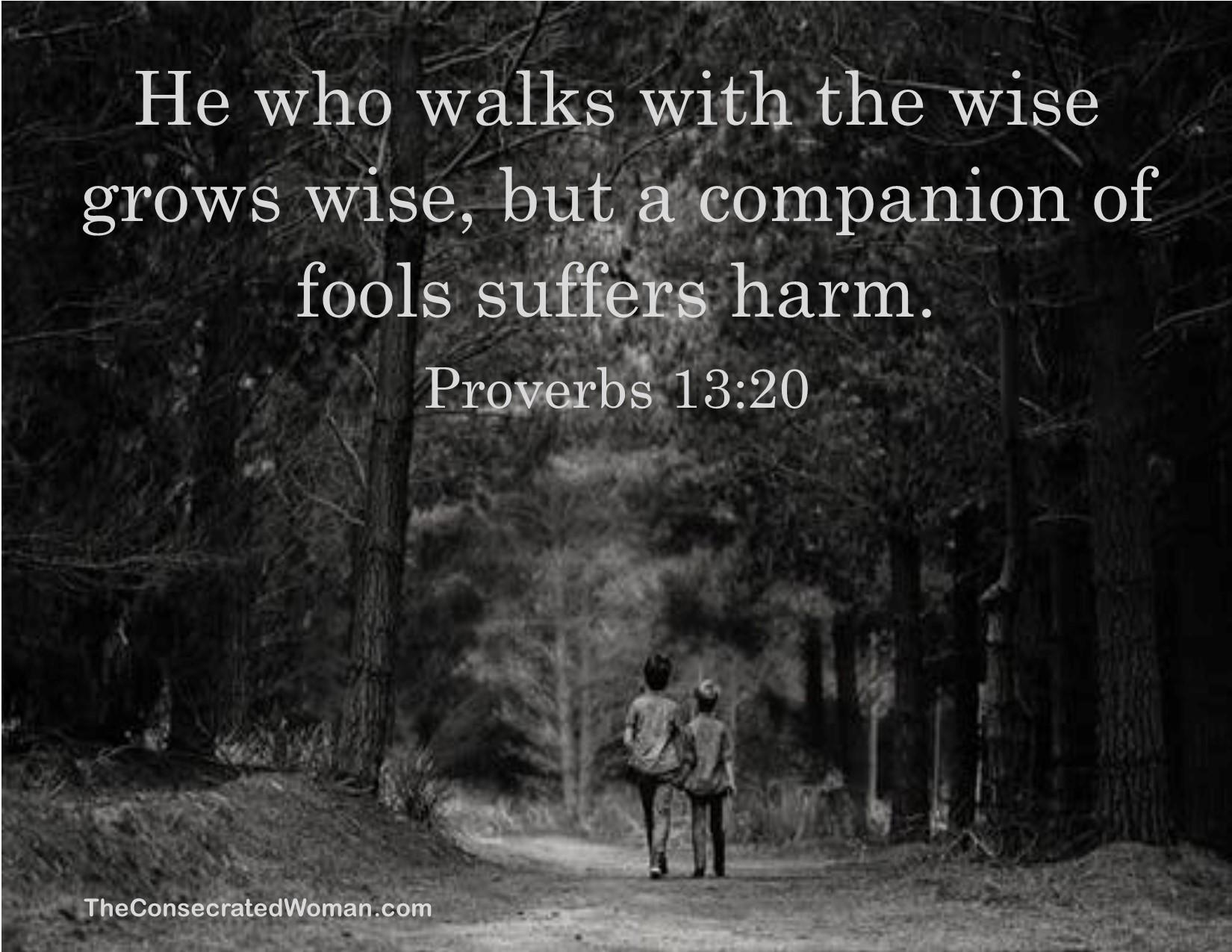 Proverbs 13 20