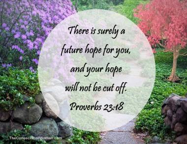 proverbs 23 18