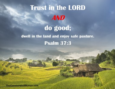psalm 37 3