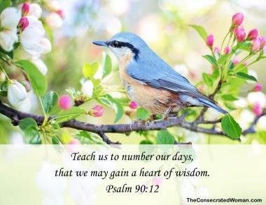 psalm 90 12