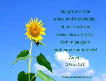 2 Peter 3 18
