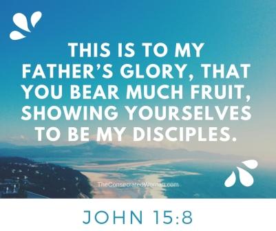 John 15 8.jpg