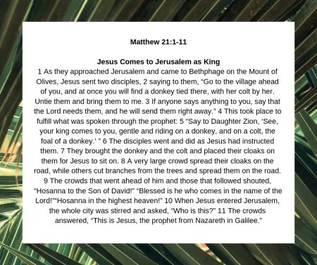 Matthew 21 1-11.jpg