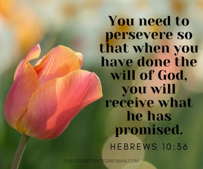 Hebrews 10 36 2.jpg