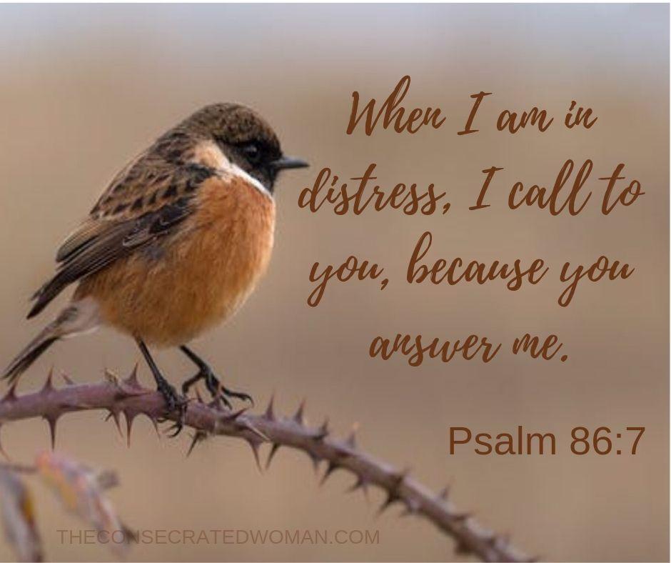 Psalm 86 7