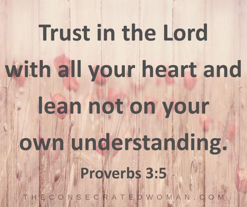 Proverbs 3 5 (2)