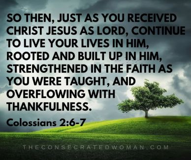 Colossians 2 6-7