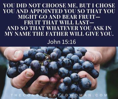 John 15 16 (2)
