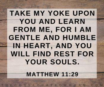 Matthew 11 29