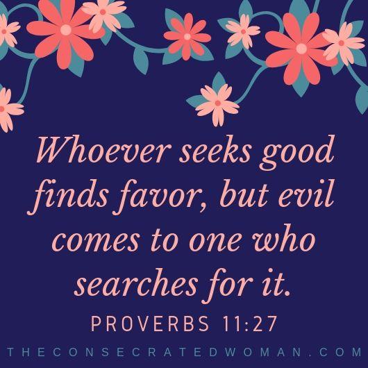 Proverbs 11 27