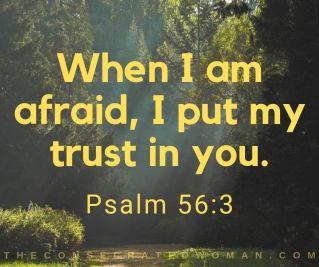 Psalm 56 3